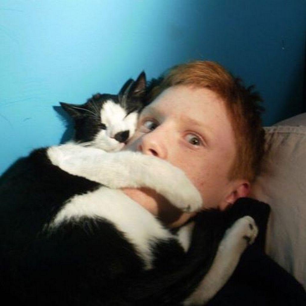 amoureux-chats-13