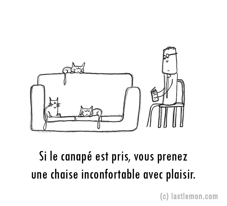 parent-fou-chats-10