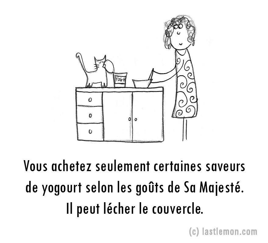 parent-fou-chats-13
