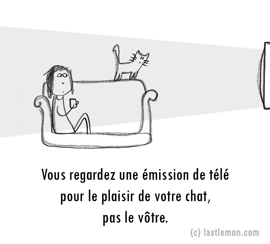 parent-fou-chats-20