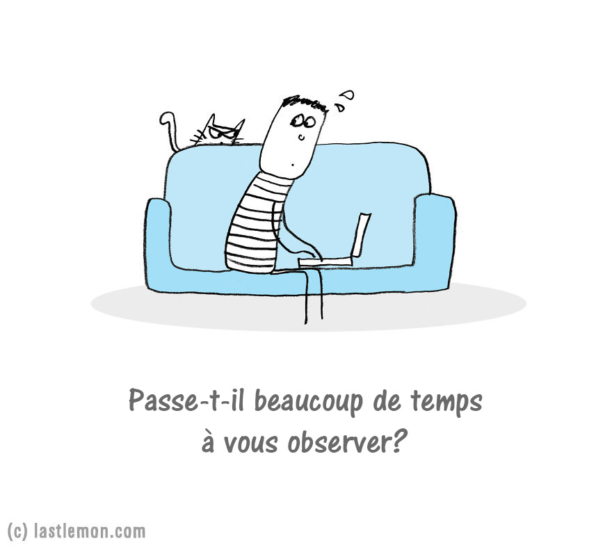 chat-extra-terrestre-03_fr