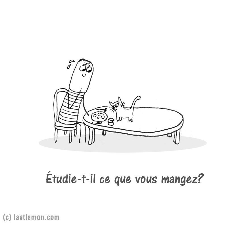 chat-extra-terrestre-07_fr