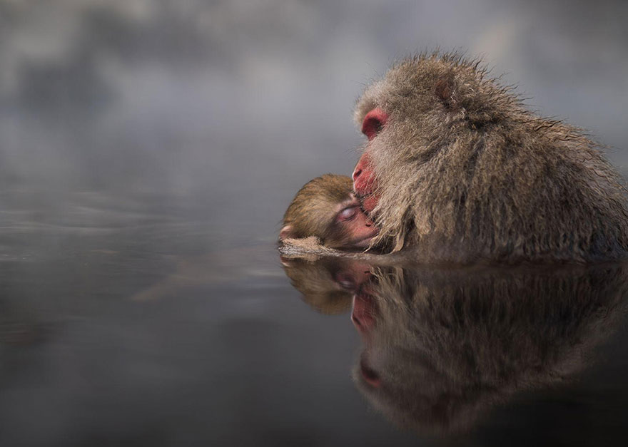concours-photographe-voyageur-2016-national-geographic-10