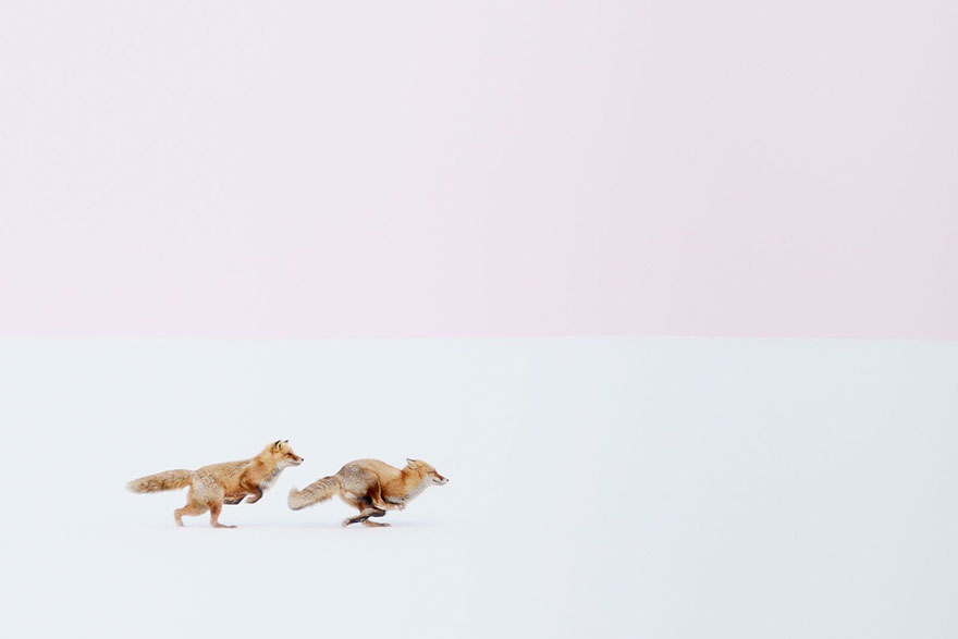 gagnants-concours-photographe-voyageur-2016-national-geographic-03
