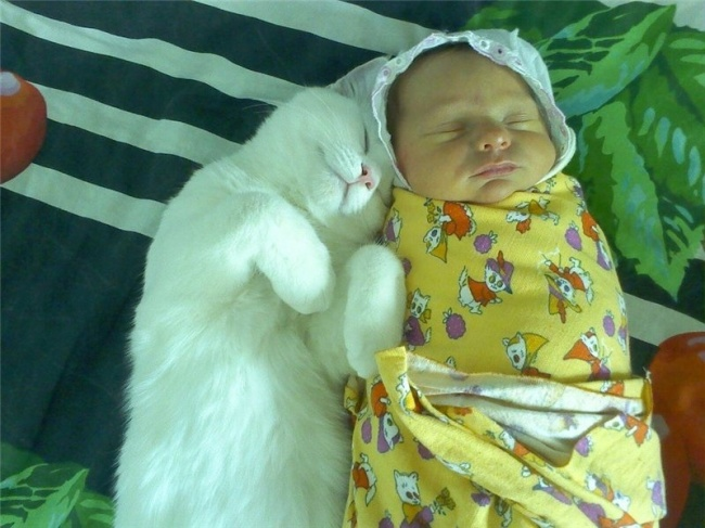 photos-parents-bebes-enfants-21