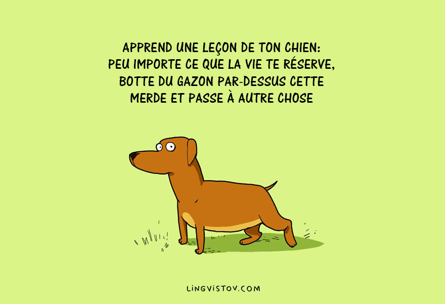 illustrations-chiens-lingvistov-01