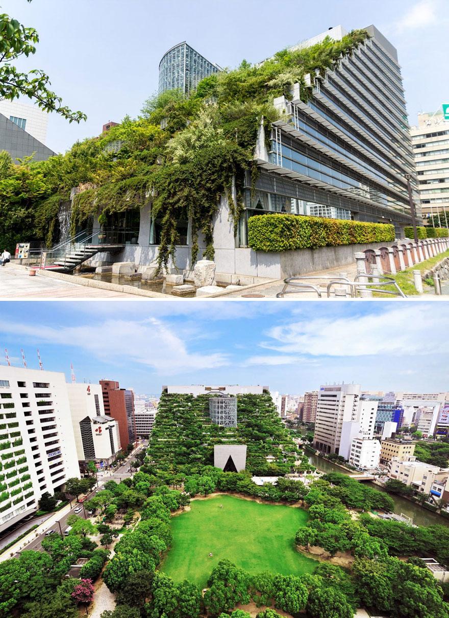 architecture-moderne-japonaise-14