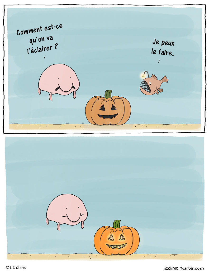 animaux-halloween-liz-climo-10-new