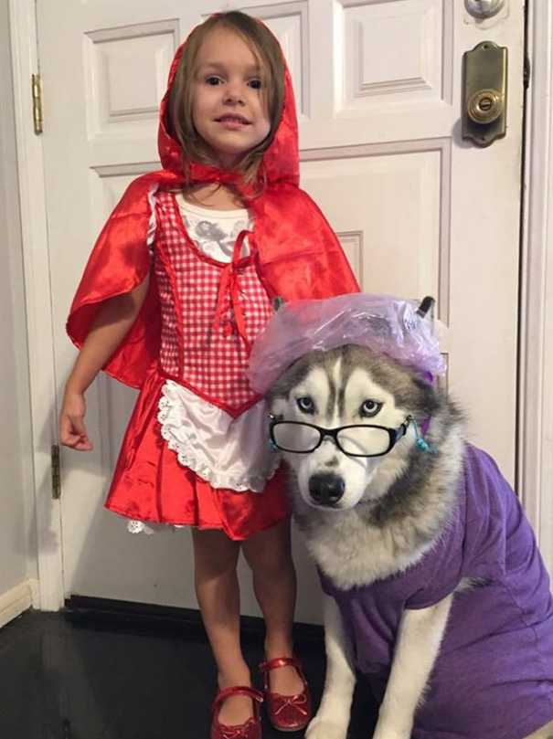 costumes-halloween-chiens-03