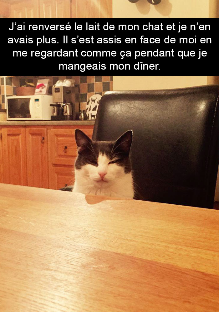 chats-legendes-droles-snapchat-04