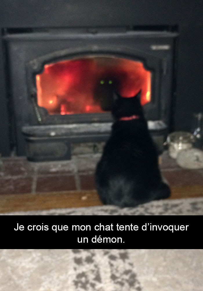 chats-legendes-droles-snapchat-09