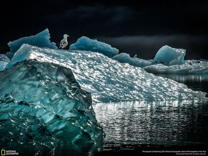 photos-nature-national-geographic-2016-08