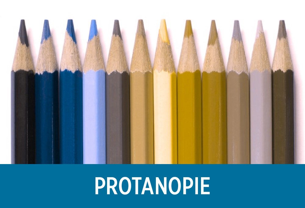 Vous serez étonné de voir comment les gens daltoniens voient le monde (11 images)