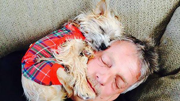 22 pères qui ne voulaient pas de «maudits chiens» dans leurs vies