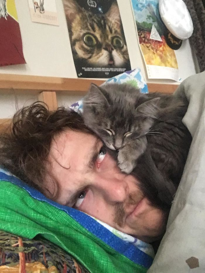 Des gens partagent des photos de leurs chats qui agissent bizarrement (30 images)
