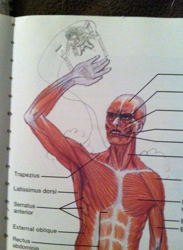 44 exemples hilarants de vandalisme dans des manuels scolaires par des élèves qui s'ennuyaient en classe