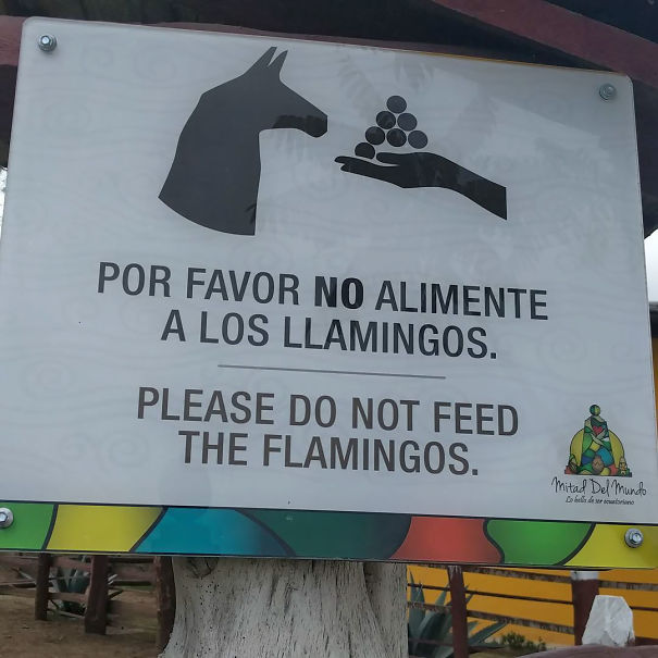 30 erreurs de traduction hilarantes qui vous feront mourir de rire