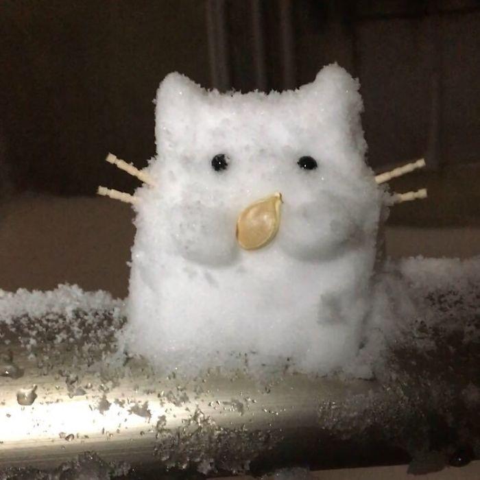 Une importante chute de neige s'abat sur le Japon, et les résultats parlent d'eux-mêmes