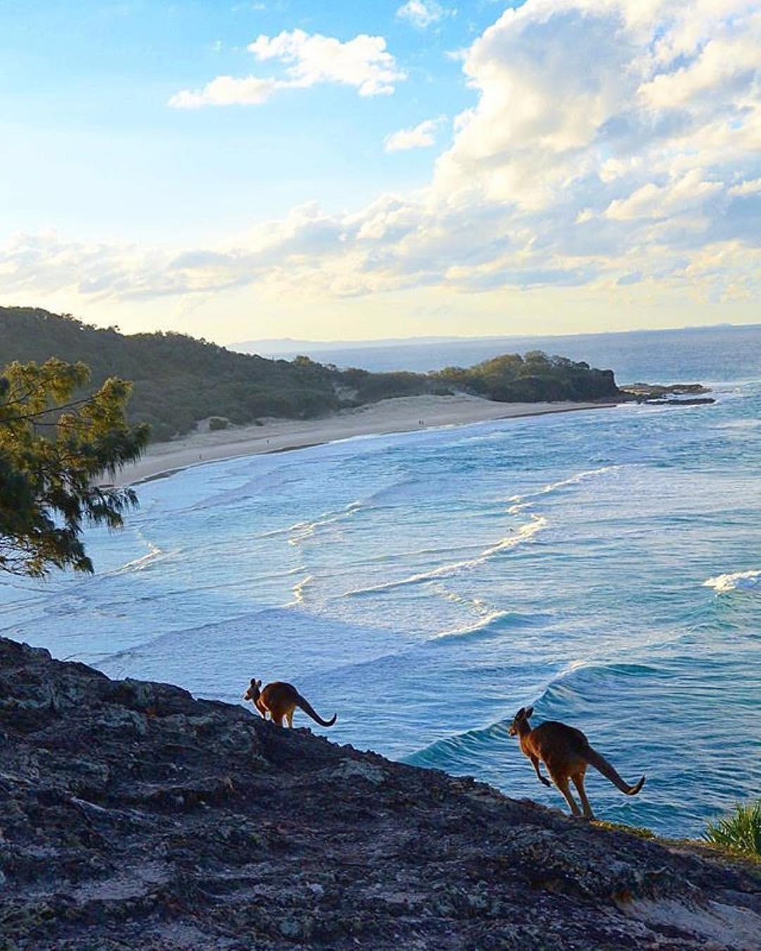 18 photos qui prouvent que l'Australie n'est pas seulement un autre pays, c'est un autre monde