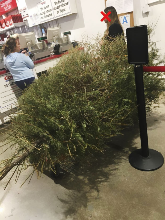 Une femme retourne un arbre de Noël le 4 janvier « parce qu'il est mort », et la réponse du magasin vous rendra furieux