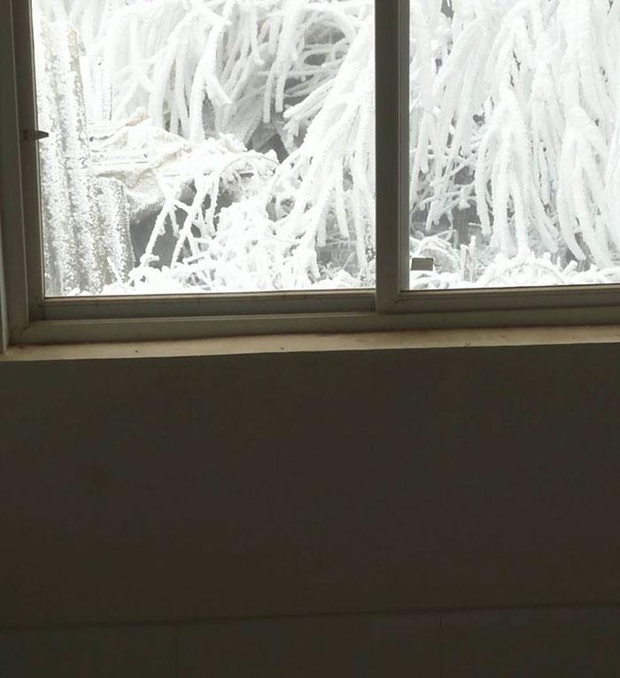 Un garçon marche 4,8 km dans un froid glacial pour aller à l'école, et ses conditions de vie vous briseront le coeur – ipnoze