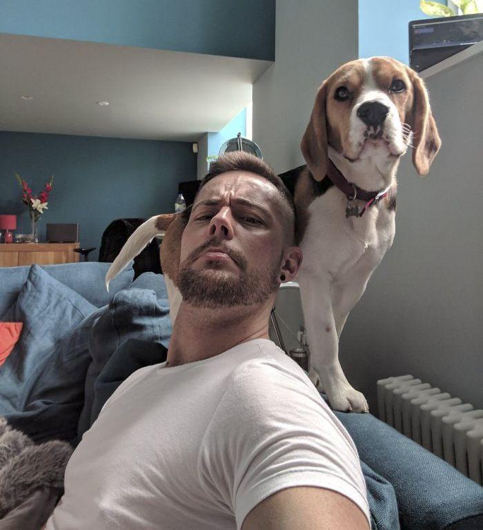 Cet homme et son chien viennent tout juste de déclencher la tendance la plus adorable et ces 33 photos vont vous faire sourire