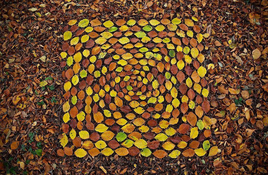 Cet artiste passe des heures à disposer des objets naturels en mandalas stupéfiants qu'il cache en nature pour que vous puissiez les trouver