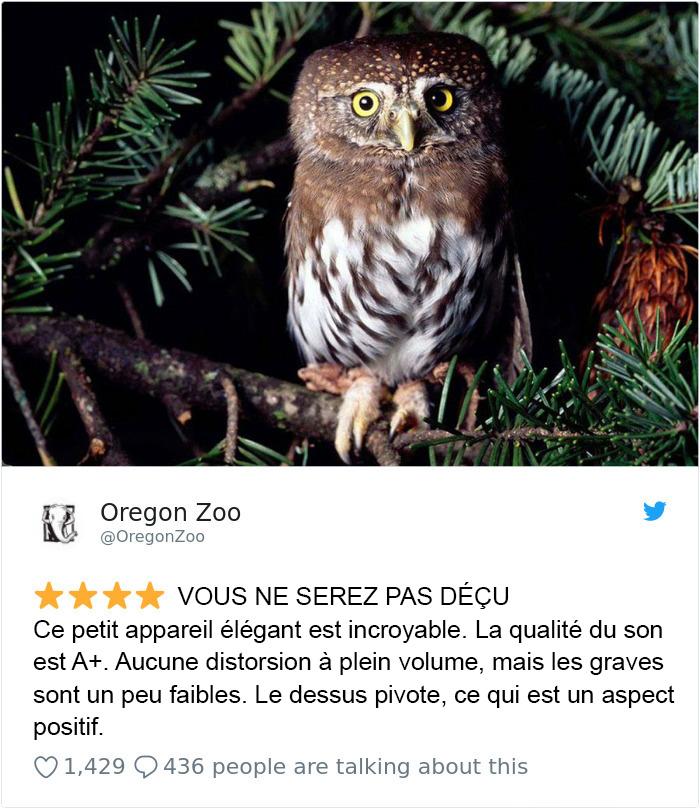 Des zoos publient des commentaires au sujet de leurs animaux comme sur Amazon, et c'est à mourir de rire