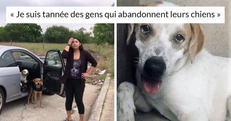 Certains ont enchaîné et abandonné leurs chiens pendant les inondations, et ces photos vous briseront le coeur