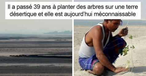 Il y a près de 40 ans, un garçon de 16 ans a commencé à planter un arbre par jour sur une île isolée, et elle est aujourd'hui méconnaissable