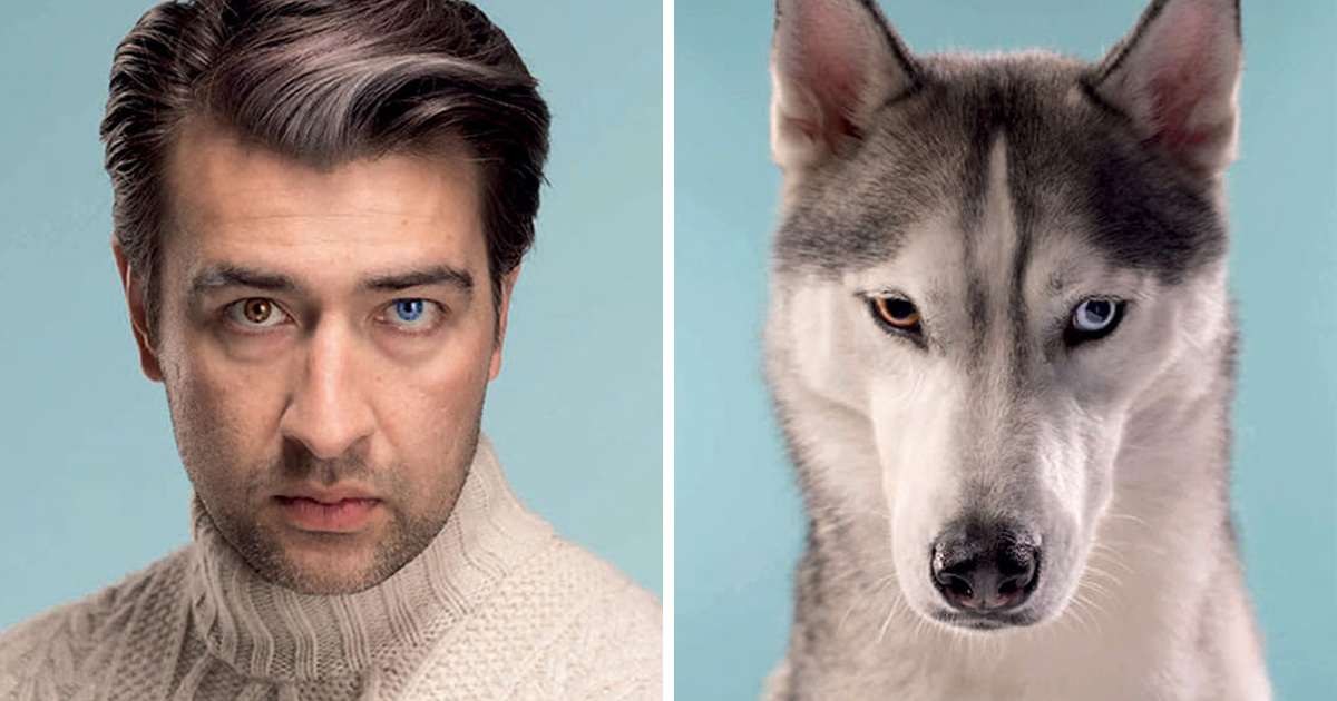 Un photographe place côte à côte 10 chiens et leurs propriétaires et la ressemblance est frappante