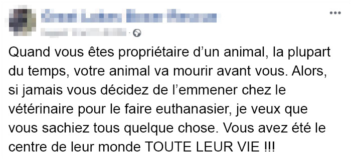 Des vétérinaires ont révélé ce que font les animaux juste avant de mourir et c'est une lecture incontournable pour tous les propriétaires d'animaux