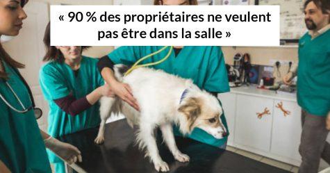 18 animaux qui tentent d'affronter le vétérinaire du mieux possible