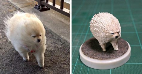 8 moments maladroits d'animaux transformés en sculptures hilarantes par un artiste japonais