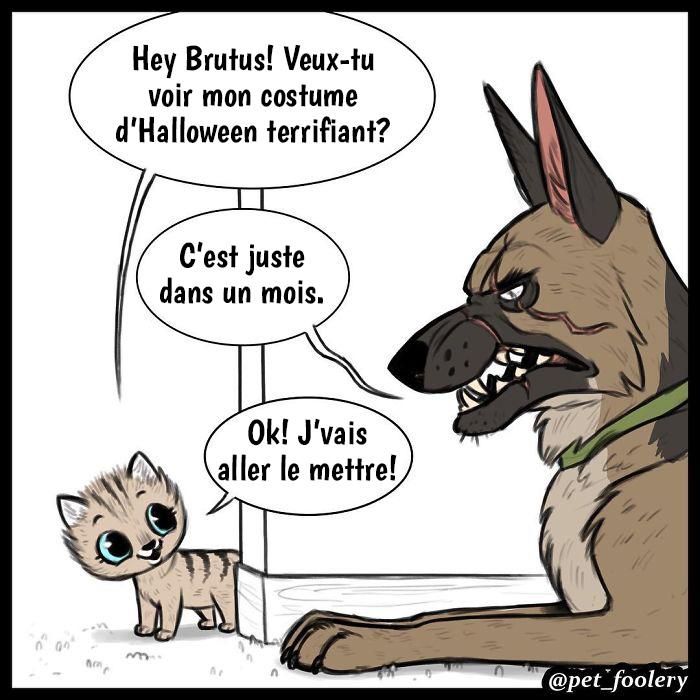 Ces bandes dessinées adorables et hilarantes à propos de Brutus et Pixie vont vous faire passer une excellente journée