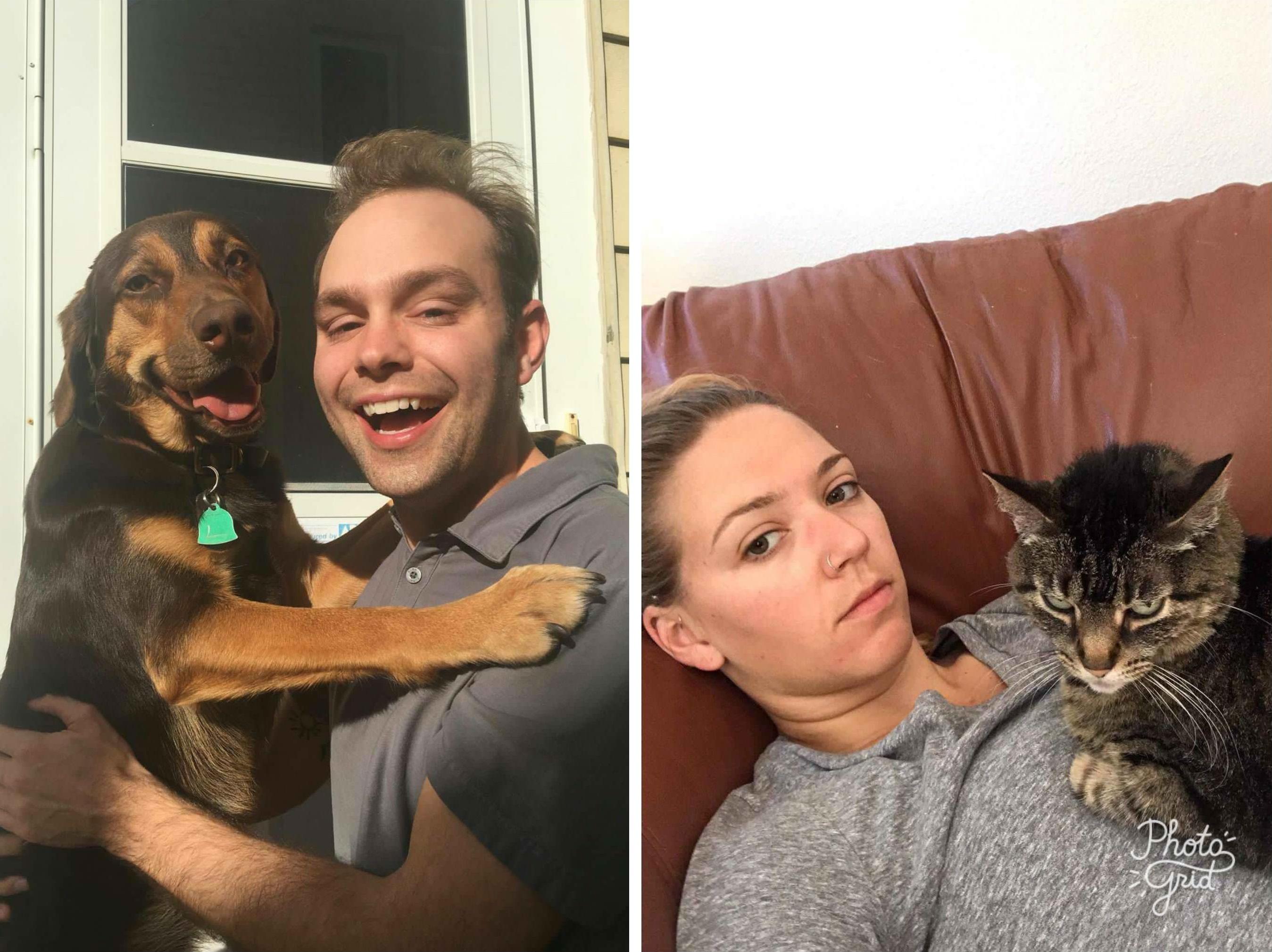 14 photos qui prouvent que les chats et les chiens ne viennent pas du même monde