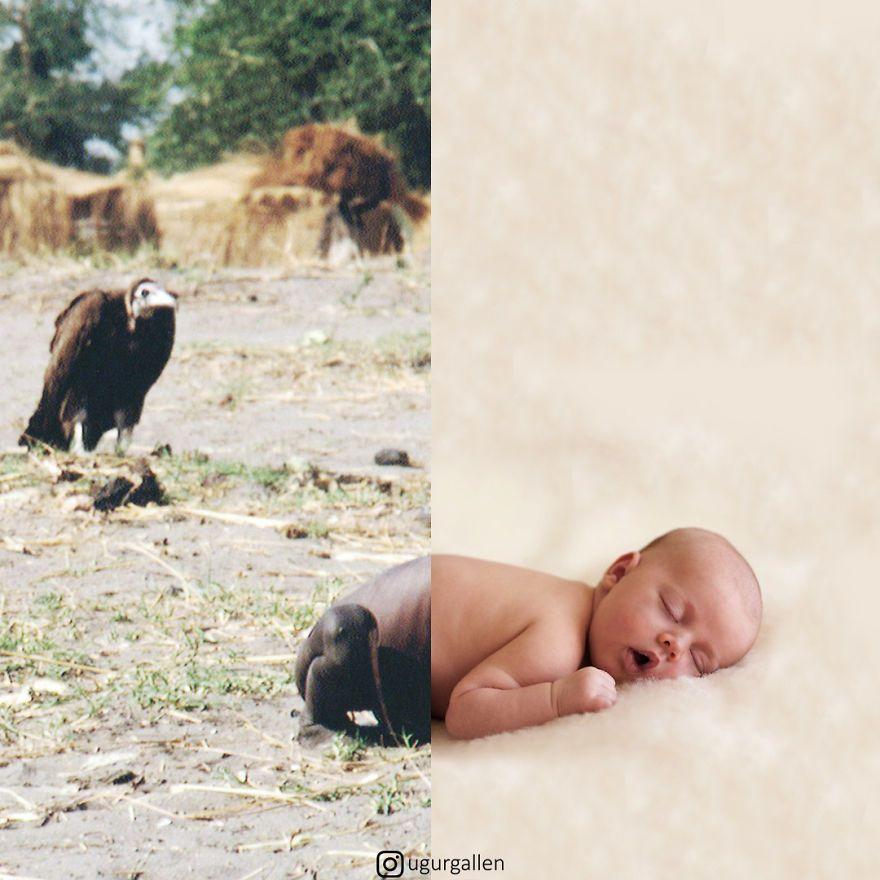 Je montre le contraste déchirant entre les deux mondes dans lesquels nous vivons (15 photos)