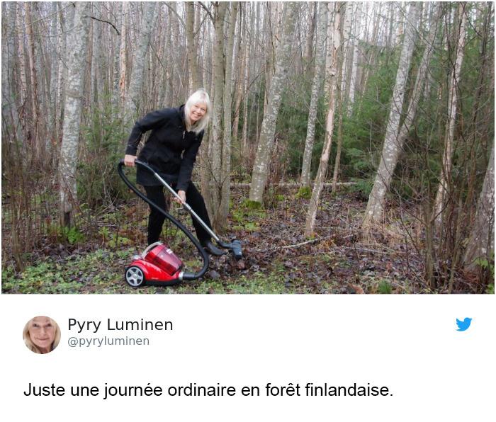 Trump affirme que la Finlande «ratisse» ses forêts pour prévenir les incendies et voici les 14 meilleures réponses