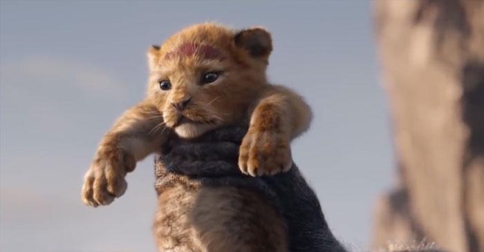 Quelqu'un a comparé côte à côte Le Roi lion 2019 à l'animation de 1994