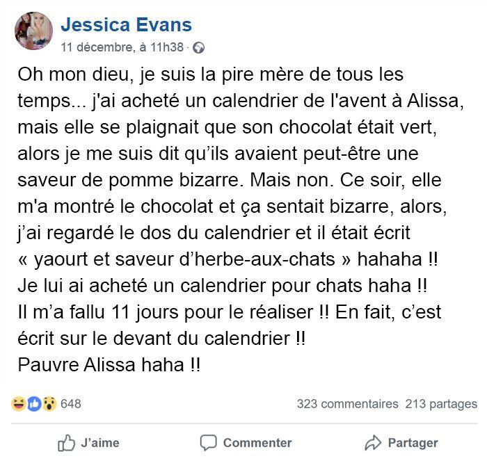 L'échec hilarant de cette mère est devenu viral quand sa fille de 9 ans a mangé les «chocolats» d'un calendrier de l'avent pour chats pendant 11 jours