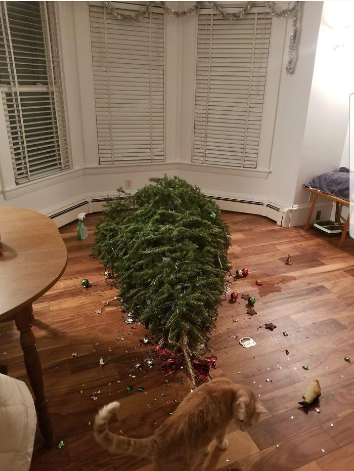 22 personnes qui passent un pire Noël que toi