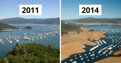 22 photos désolantes de la nature pour le 10 year challenge