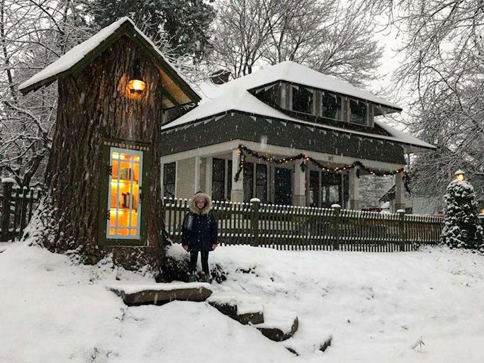 Une femme a transformé un arbre mort de 110 ans en une petite bibliothèque gratuite pour le quartier et il a l'air magique