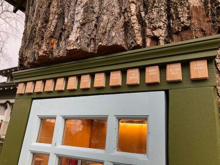 Une femme a transformé un arbre mort de 110 ans en une petite bibliothèque gratuite pour le quartier et elle a l'air magique