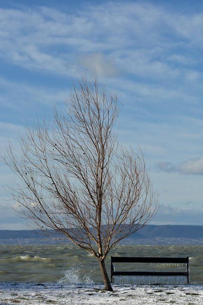 Les températures glaciales et les vents violents ont transformé le lac Balaton en un monde merveilleux hivernal (26 photos)