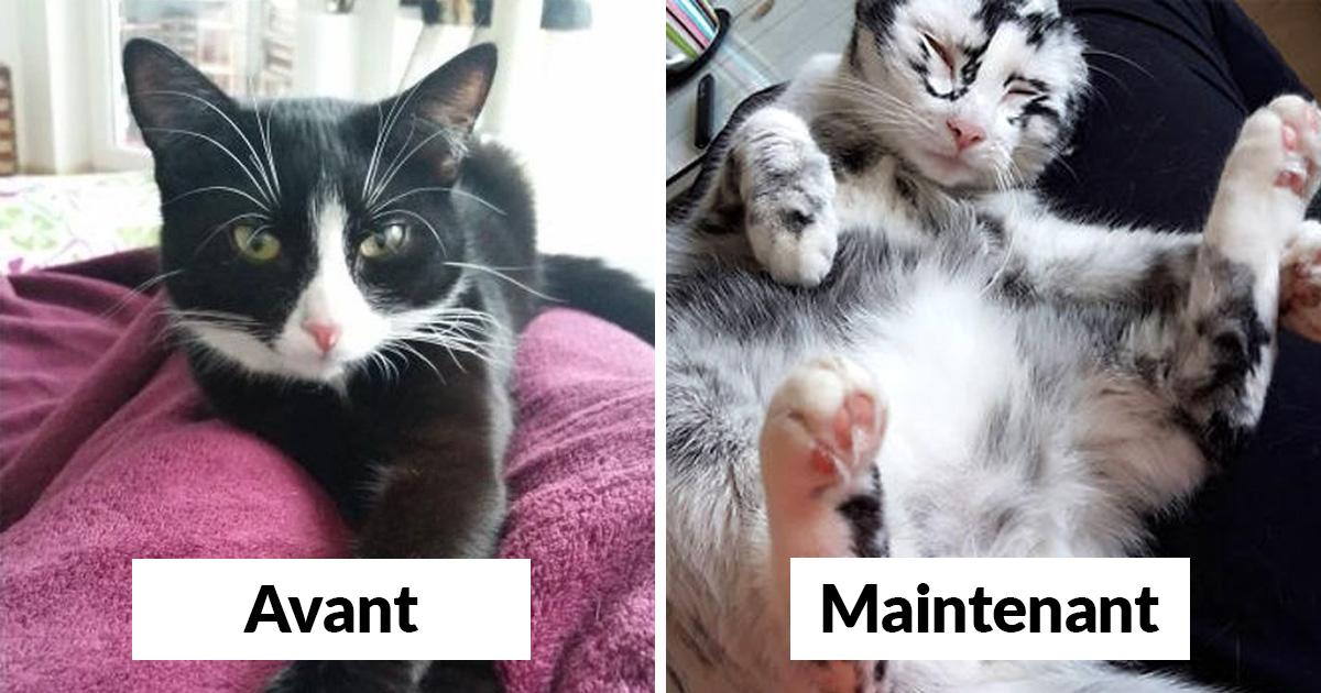 noir chatte photos seulement massage avec des films de sexe