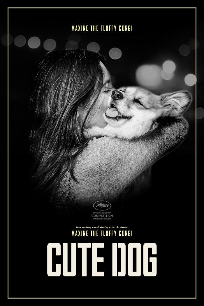 Un corgi est photoshopé dans des affiches de films populaires (13 images)
