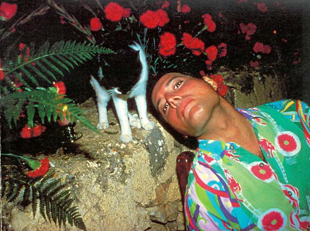 20 photos de Freddie Mercury et ses chats qu'il aimait et traitait comme ses propres enfants