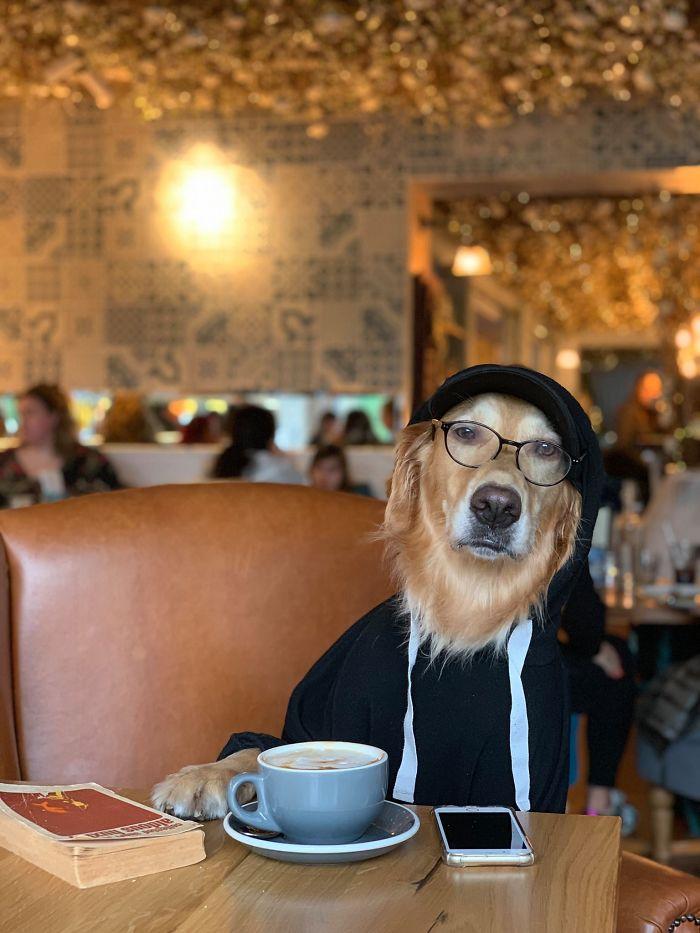 Je suis légèrement obsédée par mon chien et je ne le regrette pas du tout (22 images)