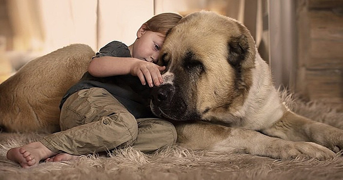 La science affirme que les gens qui parlent à leurs animaux de compagnie sont bien plus intelligents que ceux qui ne le font pas